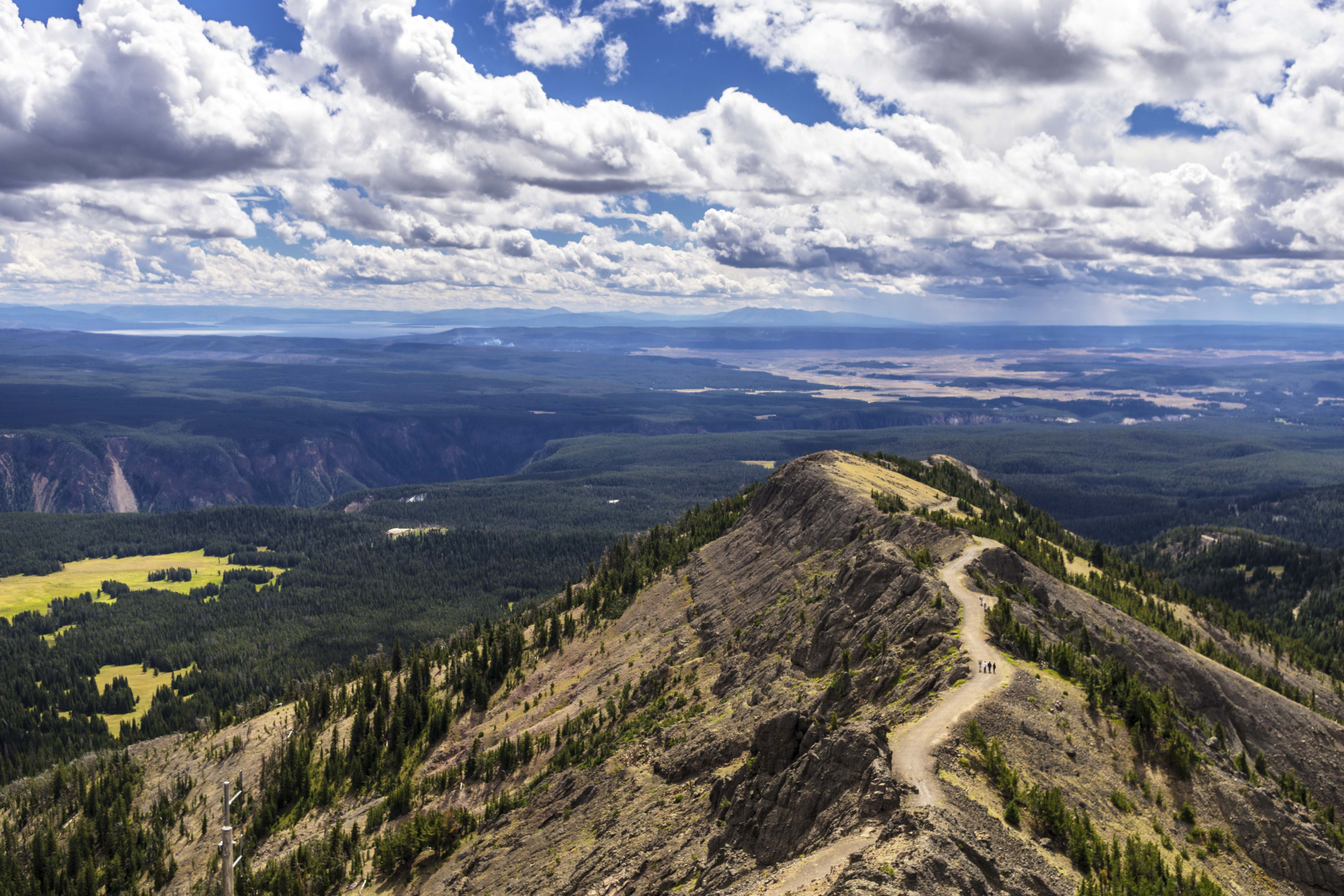 view from the top of mount washburn summit in yellowstone