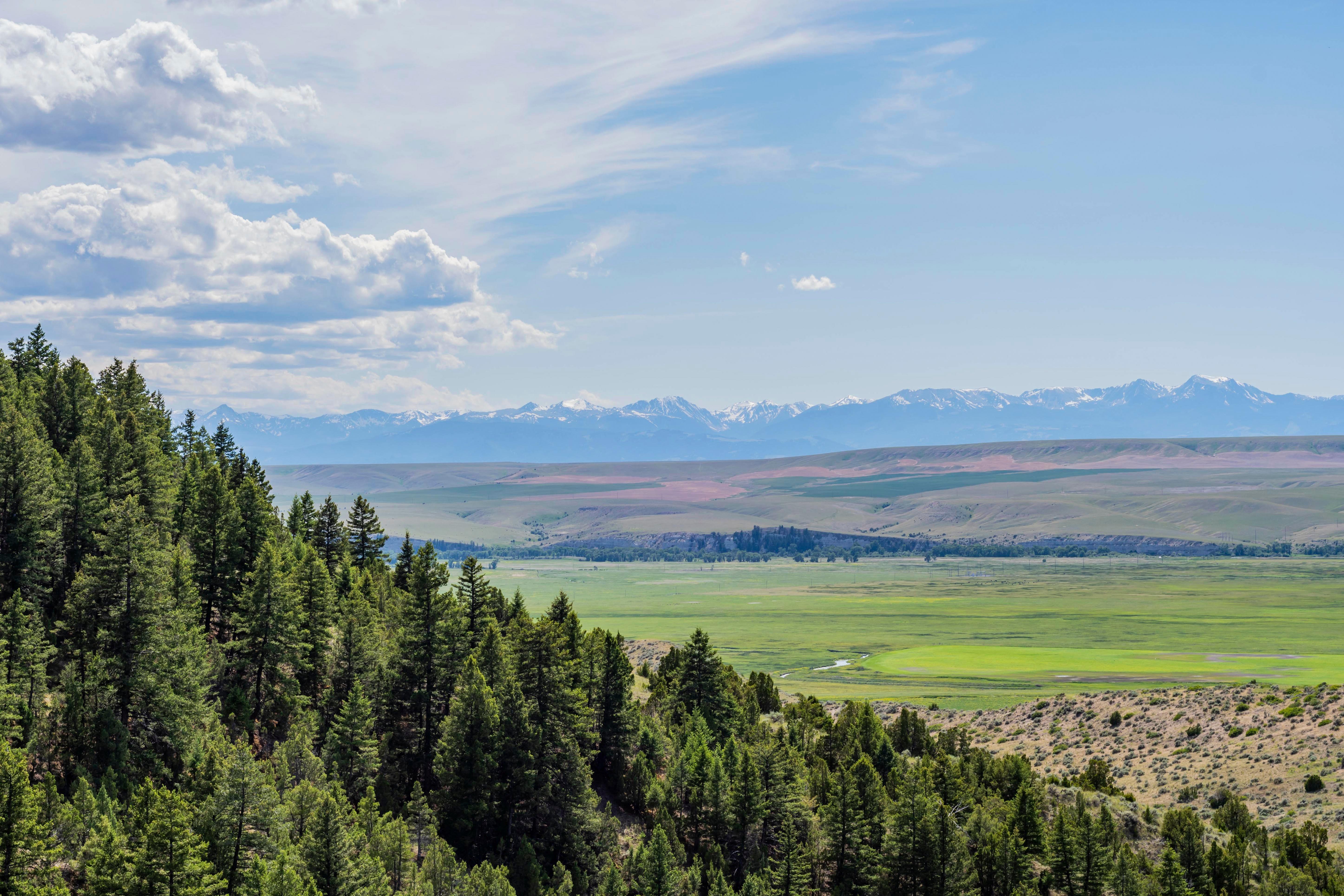 buffalo jump state park in Montana