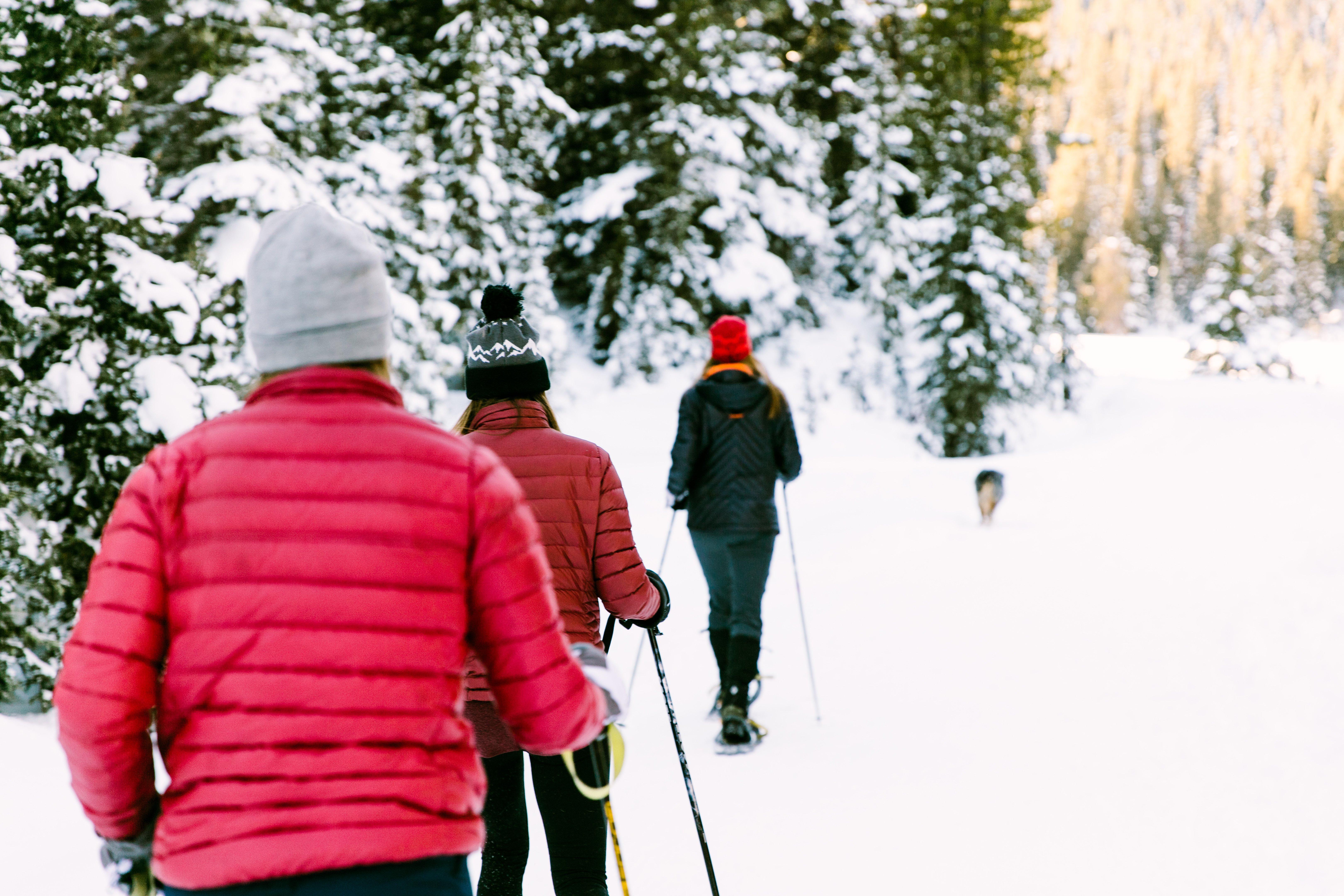 Snowshoe Trails in Bozeman