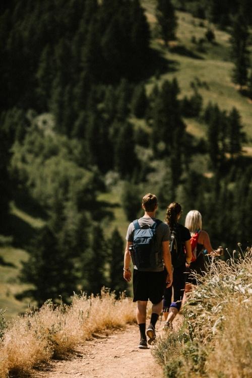 Hiking Drinking Horse Trail in Bozeman