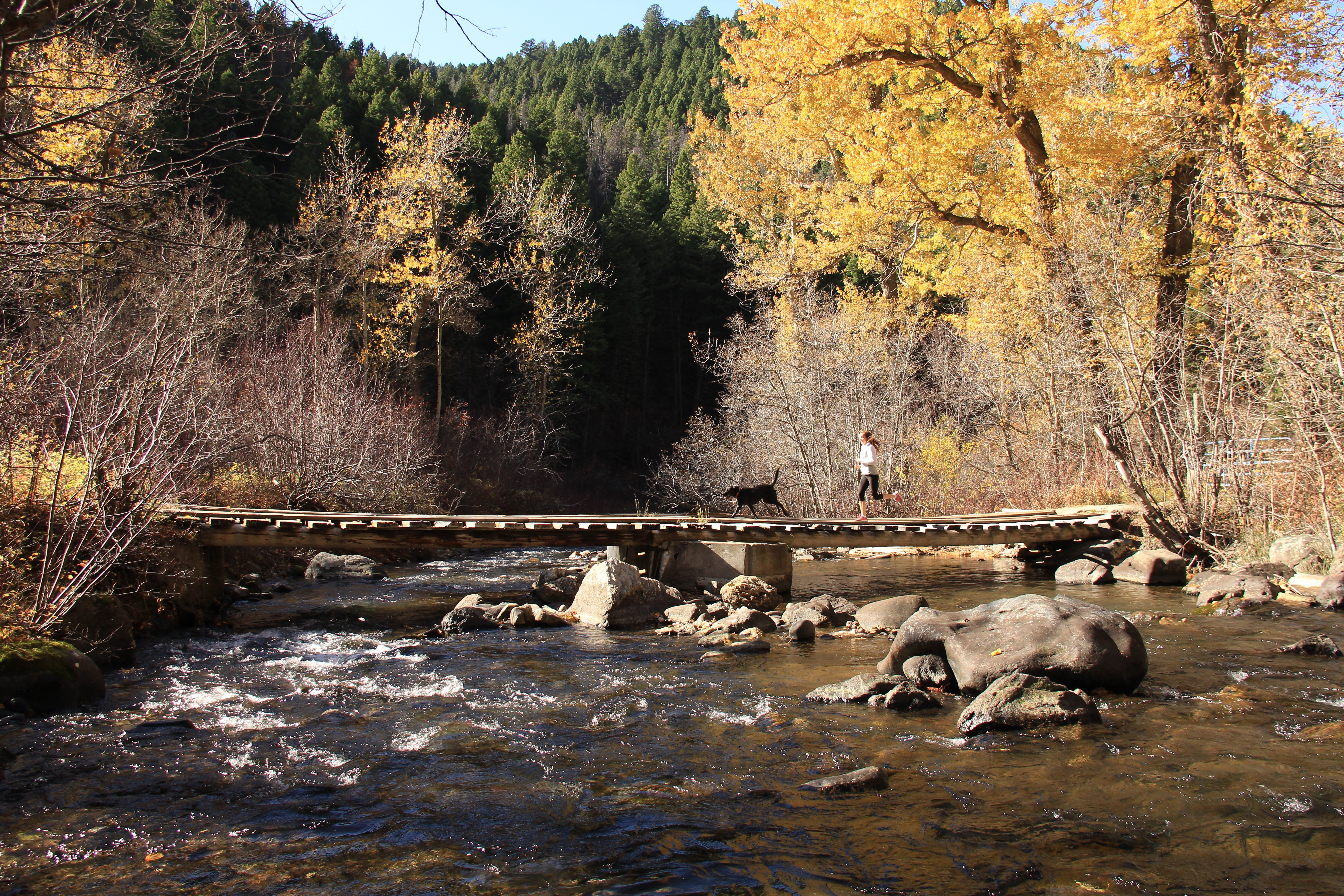 Visiting Bozeman in the Fall