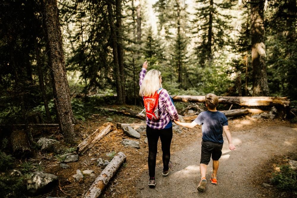 Hiking Trails Near Bozeman, Montana