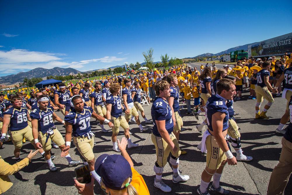 Montana State Bobcat Football