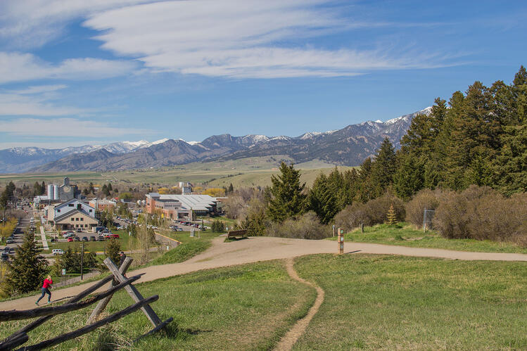 Best Spring Hikes And Trails In Bozeman MT