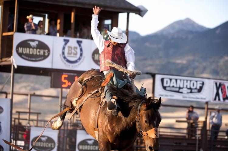The Best Montana Rodeos Near Bozeman This Summer