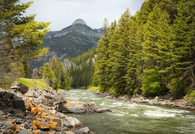 Gallatin River in Bozeman, MT