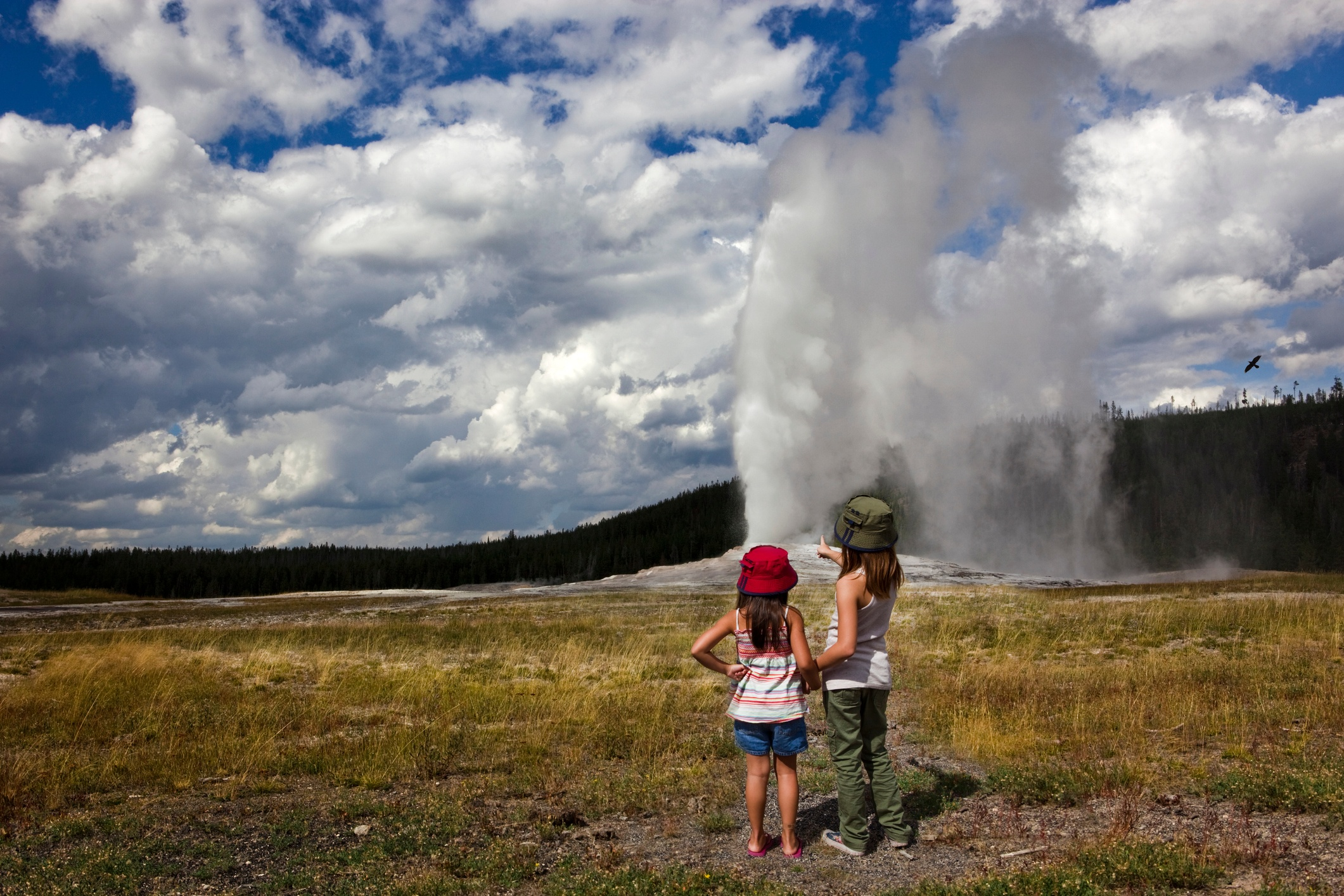 Family vacation to Bozeman and Yellowstone