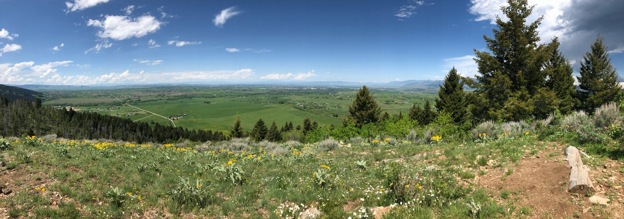 Triple Tree Trail in Bozeman, Montana