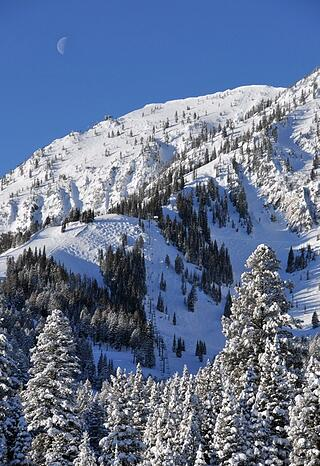 Bridger Bowl in Bozeman Montana.jpg