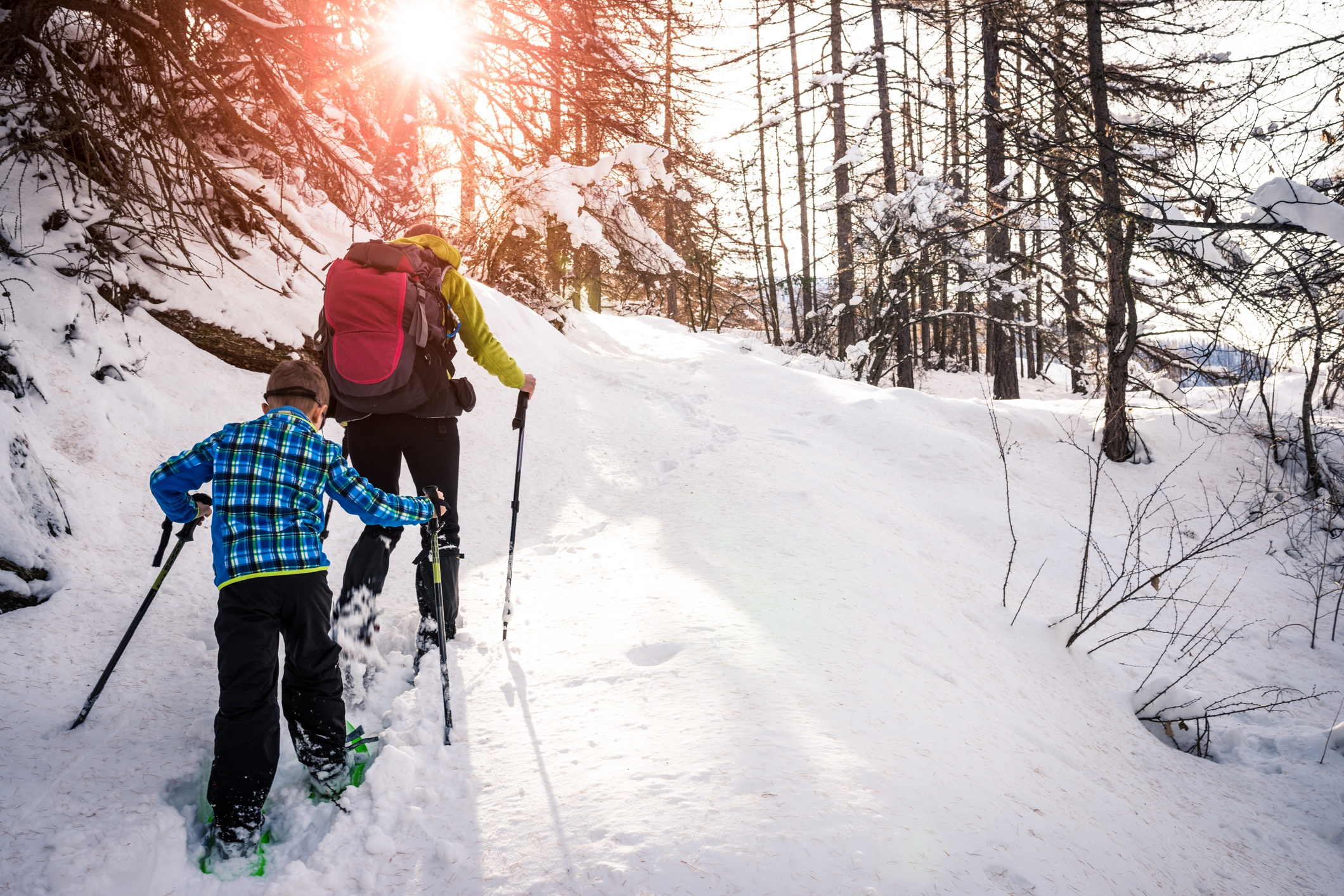 Snowshoe Trails in Yellowstone National Park.jpg