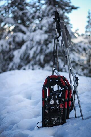 snowshoes-in-snow.jpg
