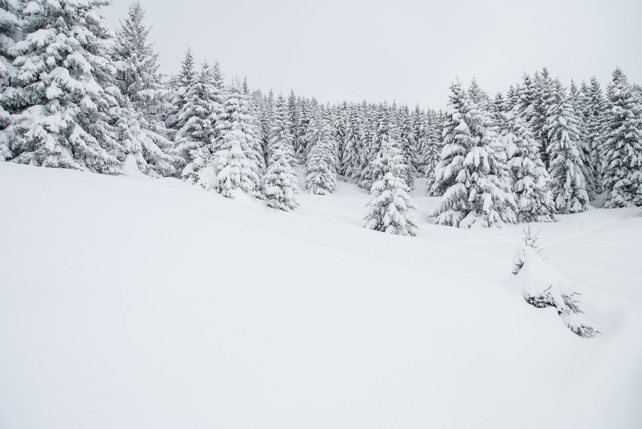 Bozeman winters