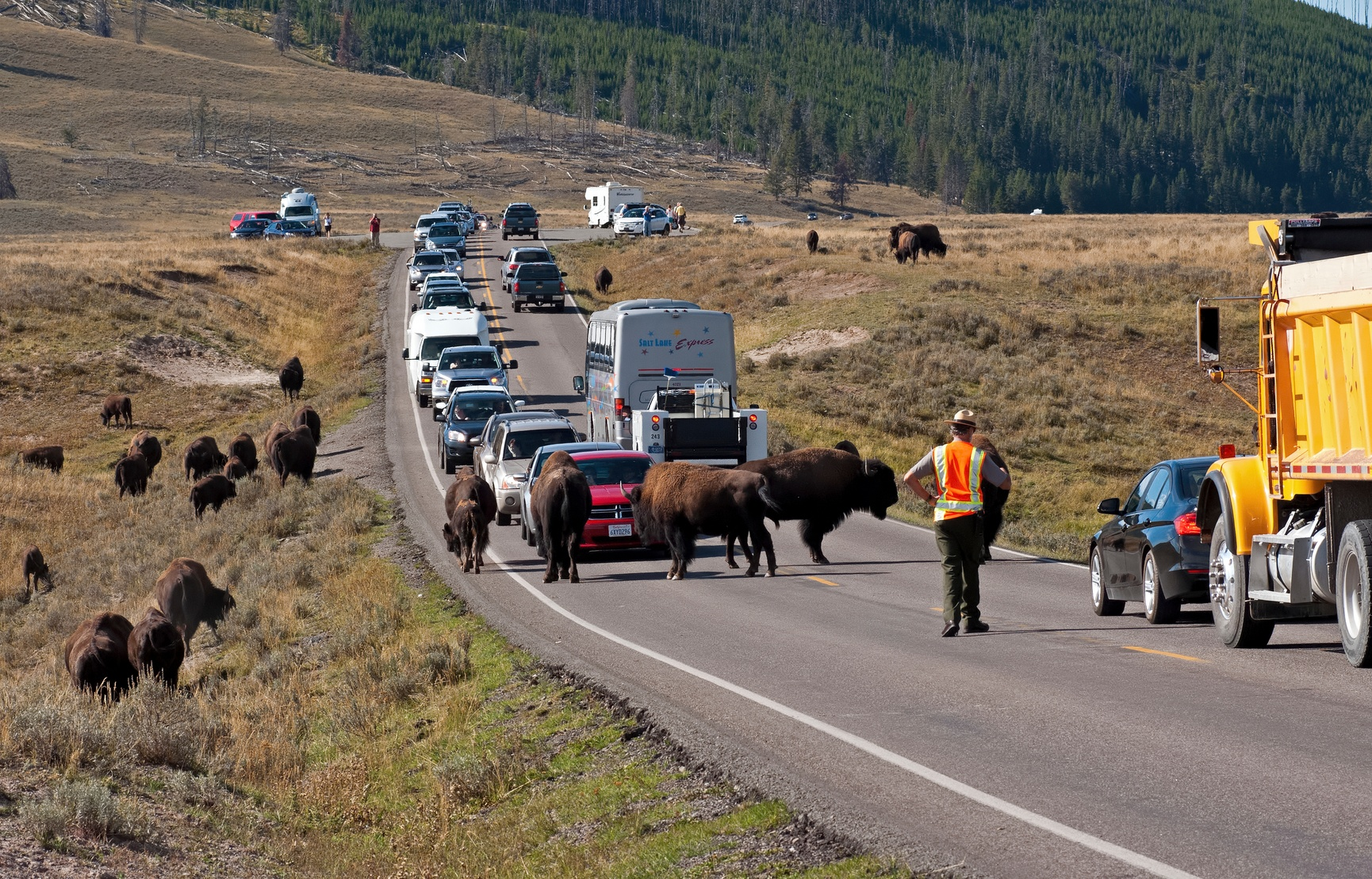Getting to Yellowstone National Park