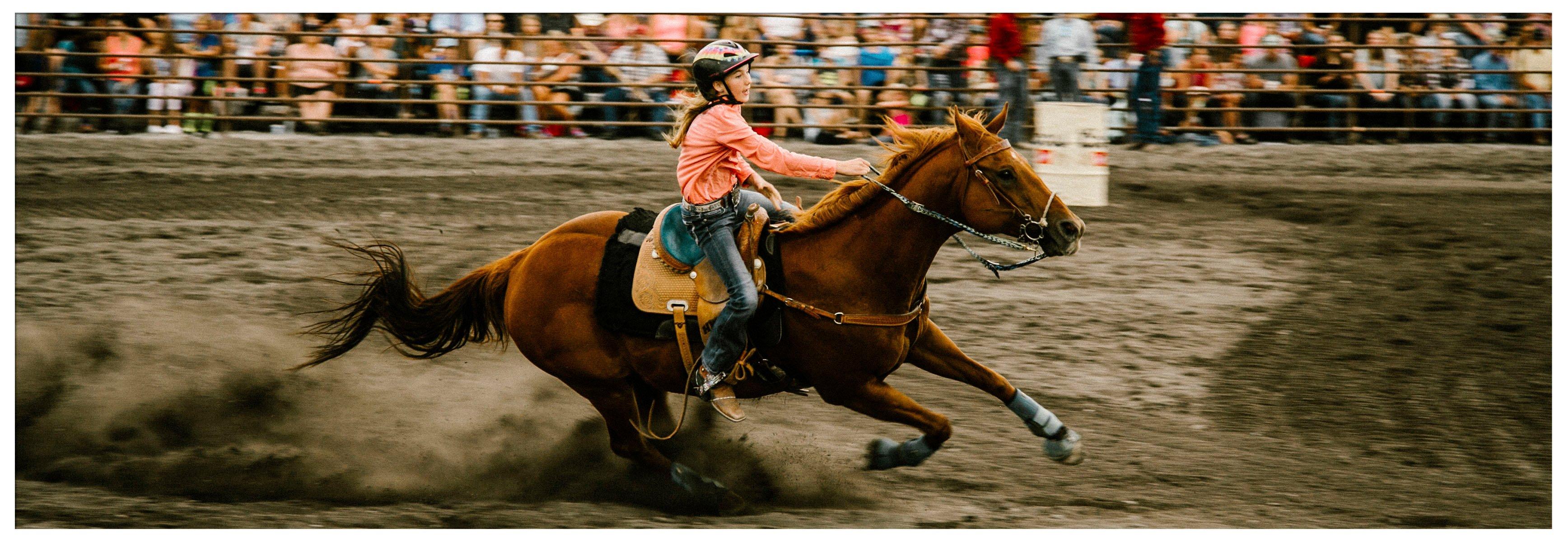 rodeo_2020_c