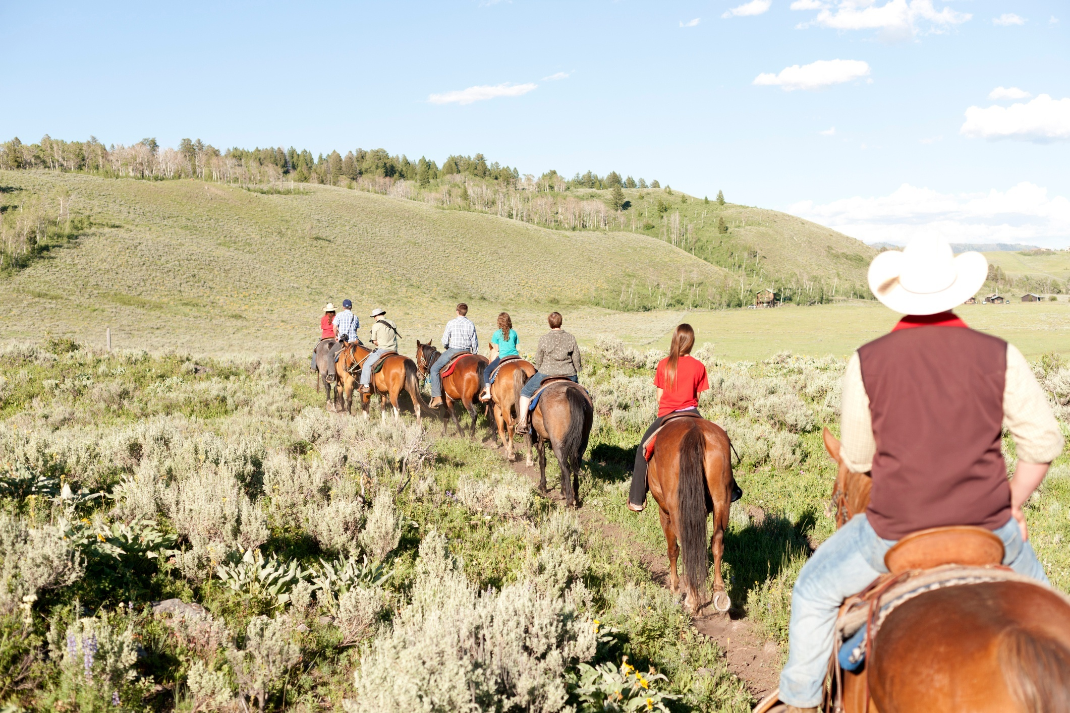 a family riding horses on a Montana guest ranch