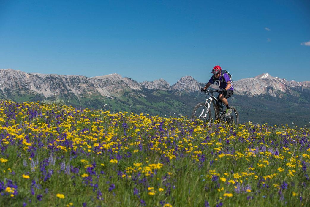Mountain Biking Trails Near Bozeman