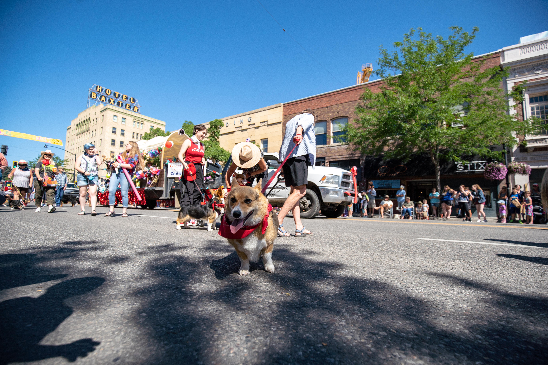 sweet pea parade in downtown bozeman montana