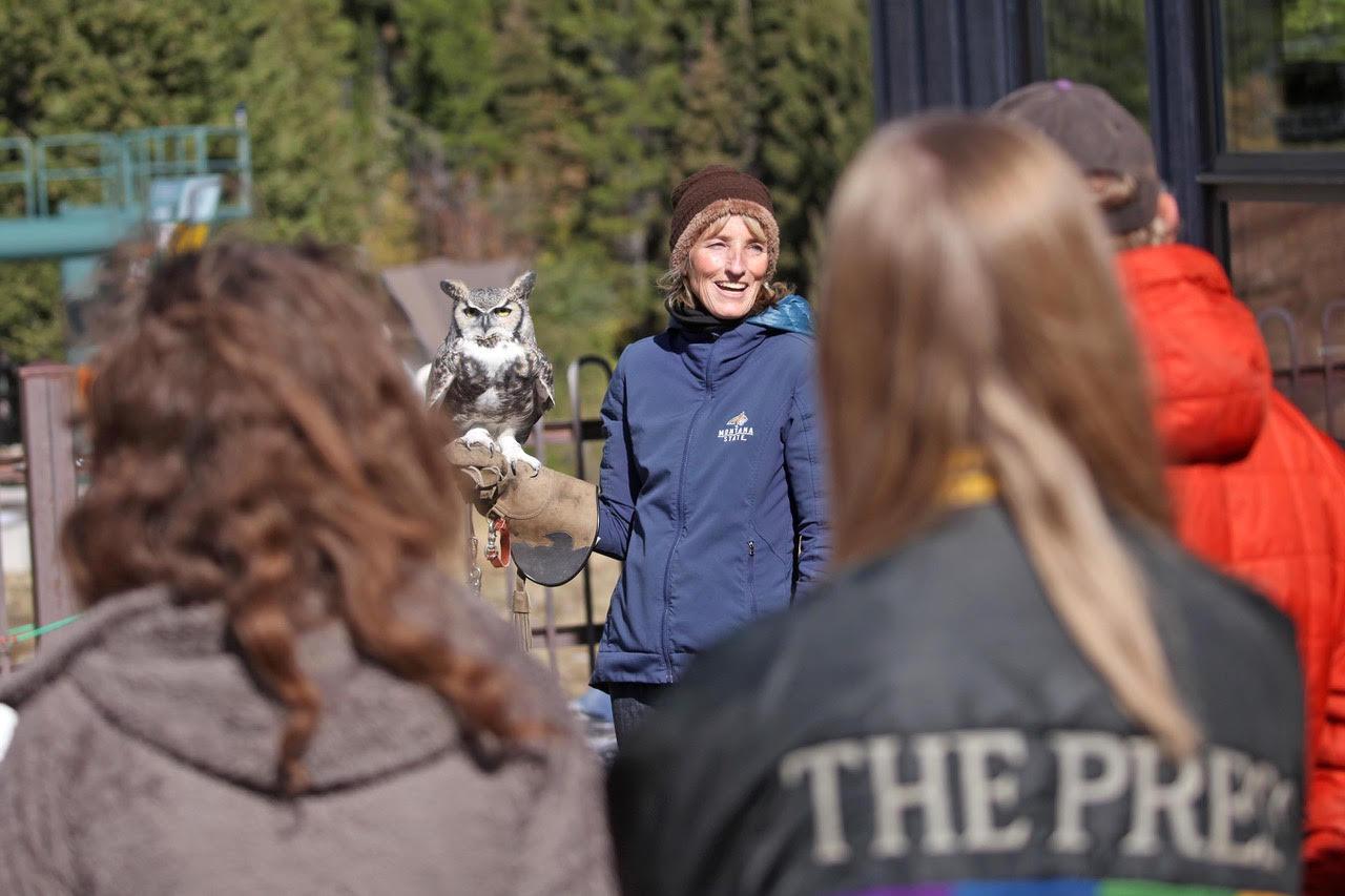 woman holds an owl at the Bridger Raptor Festival